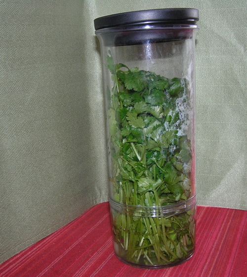 food-herb-holder
